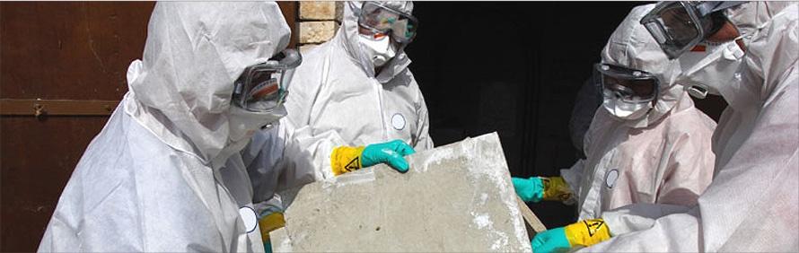 asbestos removal edmonton